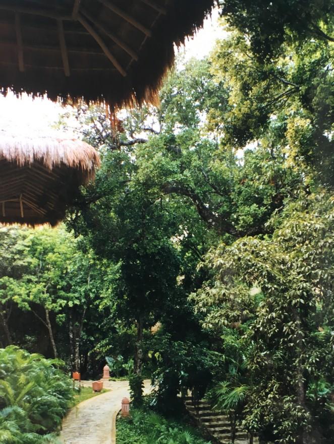 mexico-better-places-foto-denise