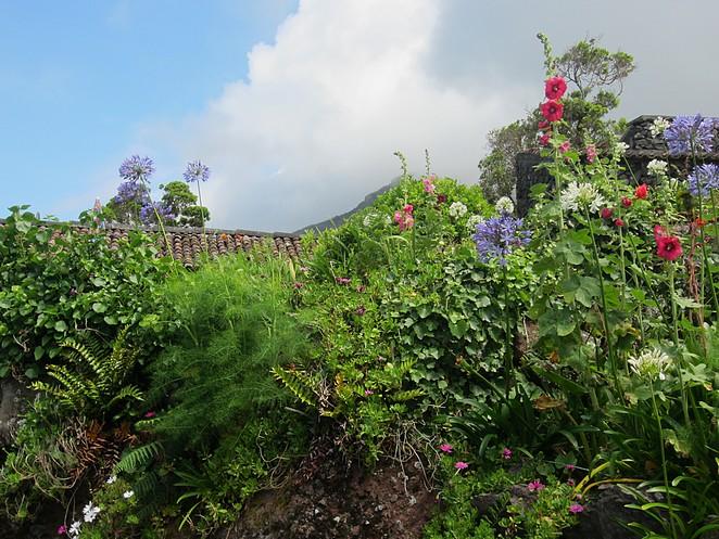 eco-village-flores
