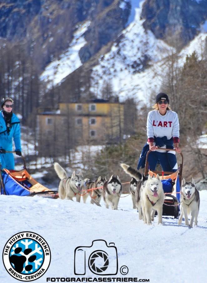 hondensledetocht-italie