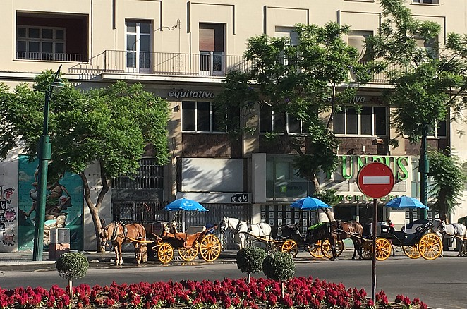 paardenkoets-malaga