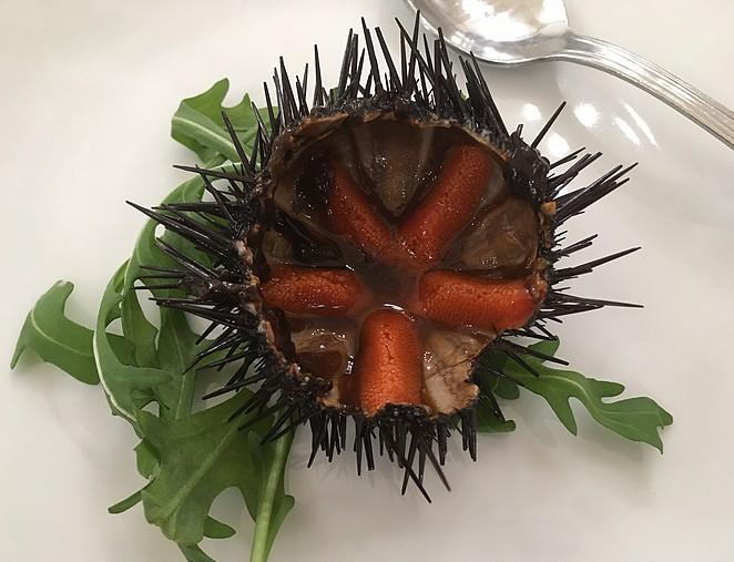 zeeegel-eten-in-puglia