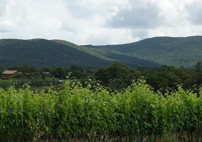 villa-natuur-toscane