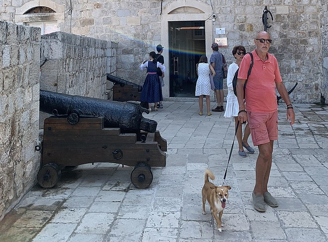 dogs-city-walls-dubrovnik