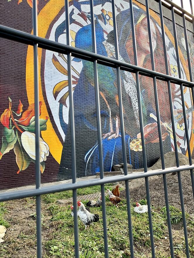 streetart-the-hague