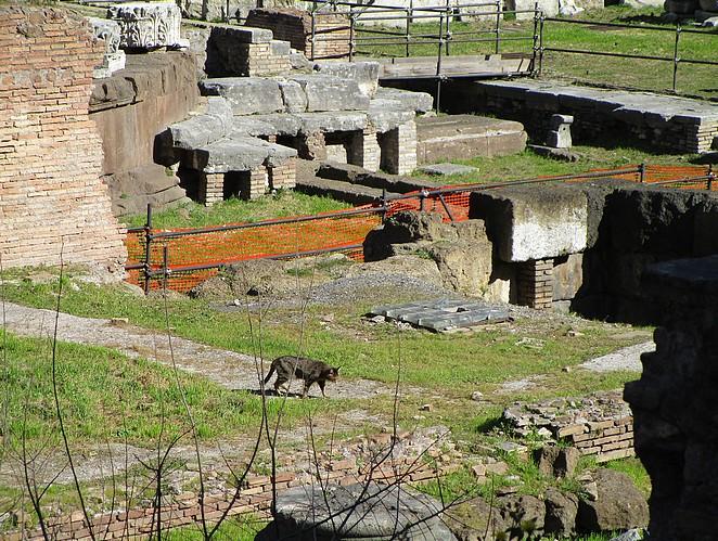 kat-ruines-rome