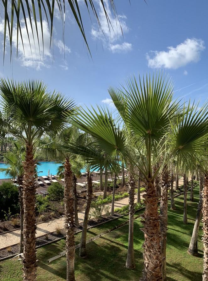 hotel-palmen-tuin-algarve
