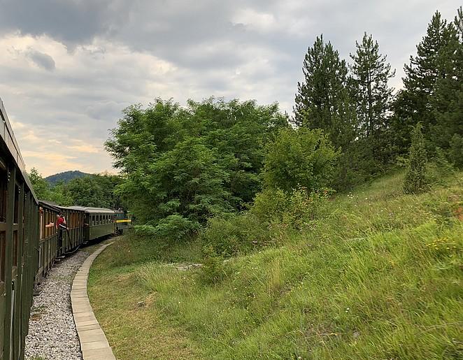 trein-natuur-servie