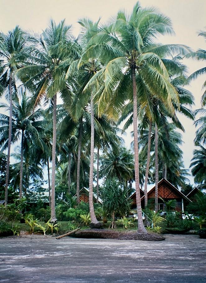 bungalow-ko-sukon