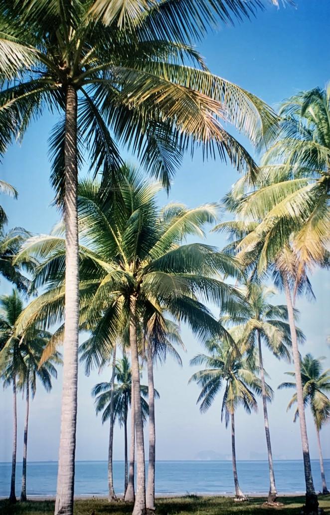 eiland-zuid-thailand