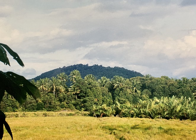 ongerept-thailand