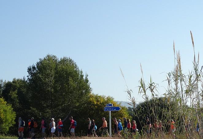 vierdaagse-mallorca