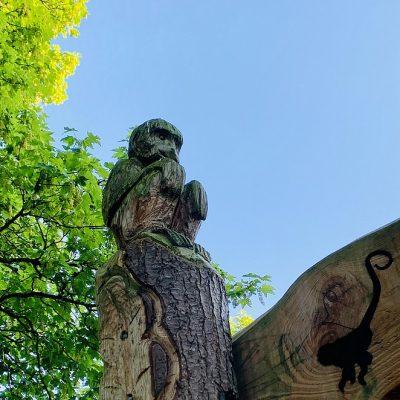 Het Apenbos in Den Haag, leuke speeltuin in de Vogelwijk!