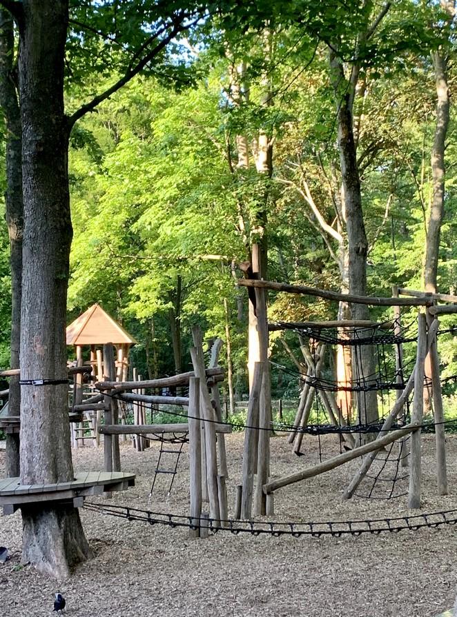 apenbos-vogelwijk