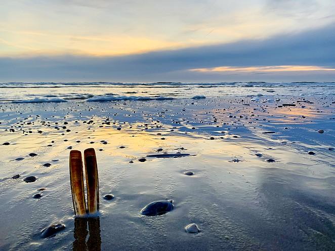 het-stille-strand