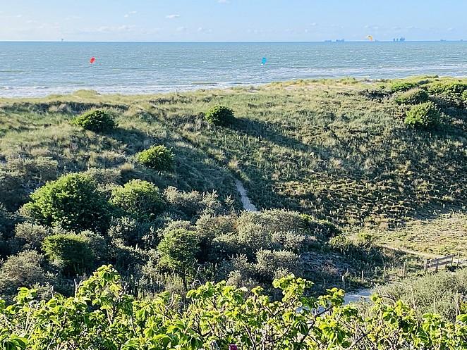 kite-surfers-zuiderstrand