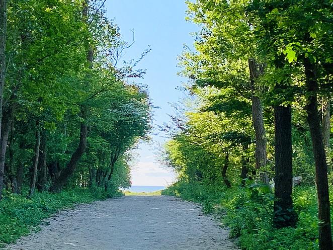 mooiste-plekken-westduinpark