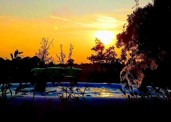 natuurhuisje met-zwembad-in-gelderland