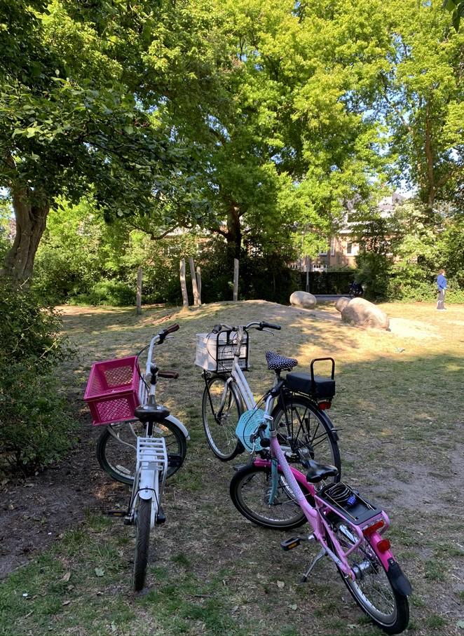fiets-vogelwijk