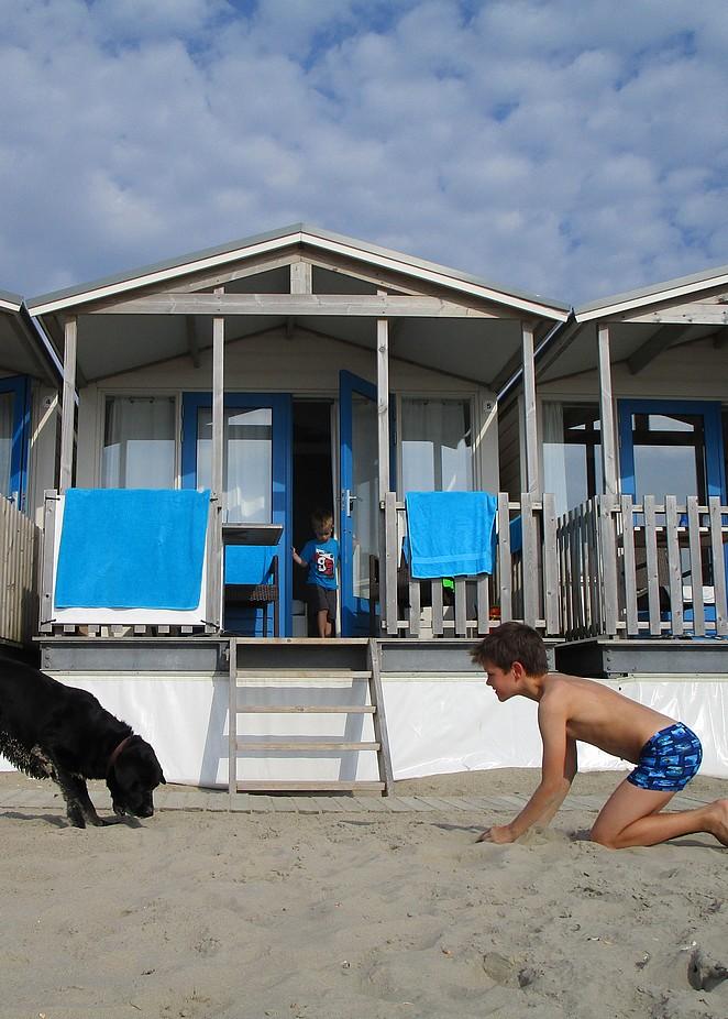 strandhuisje-met-hond