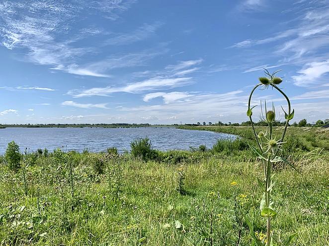 bijzonder-natuurgebied-nederland