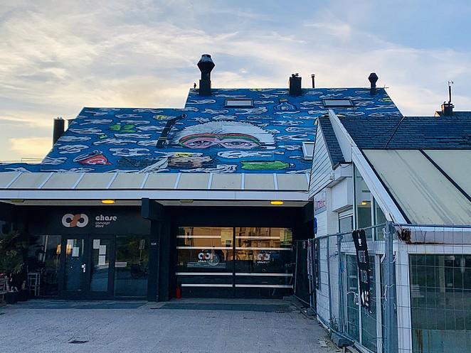 dakschildering-kijkduin