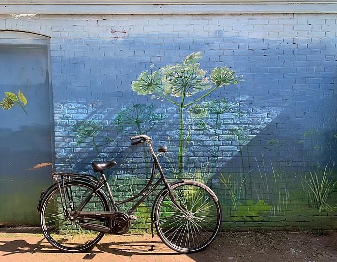 mooie-muurschildering-segbroek