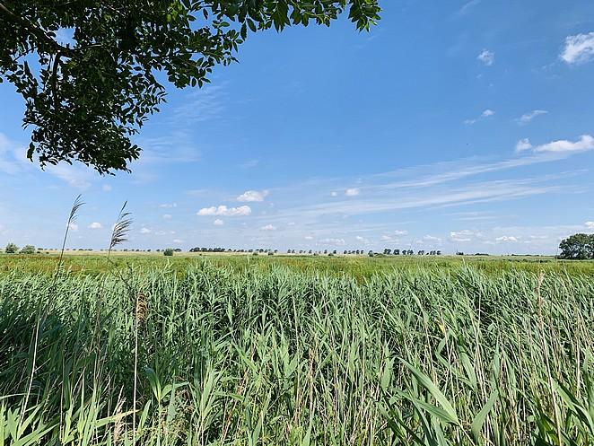 mooie-wandeling-zuid-holland