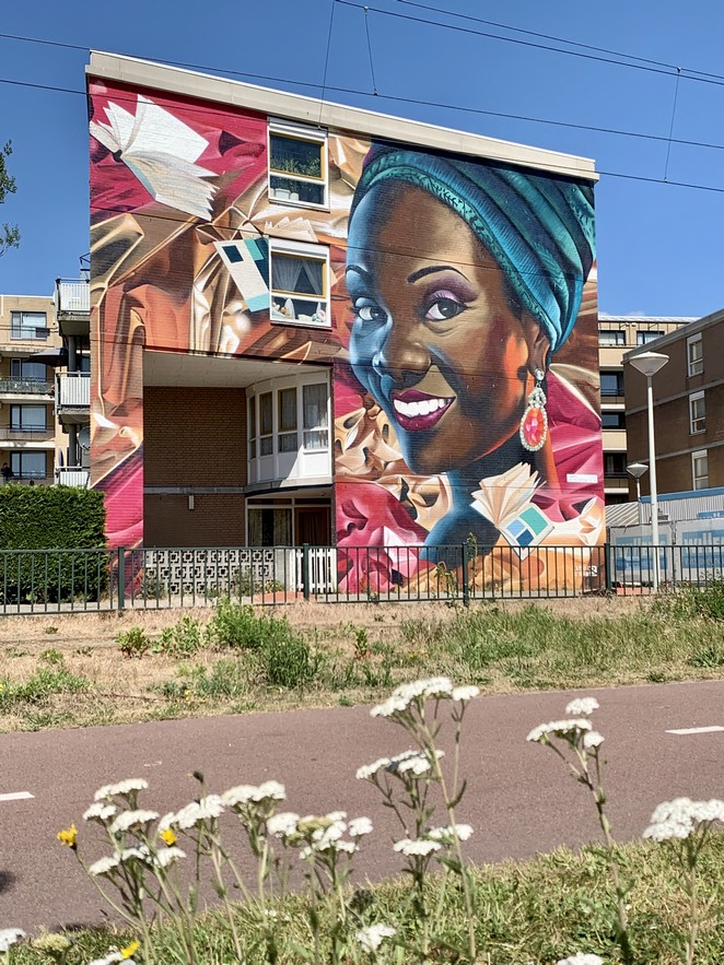 mooiste -muurschildering-den-haag