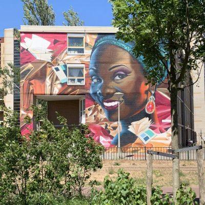 De nieuwste en mooiste muurschilderingen in Den Haag (Street Art The Hague)