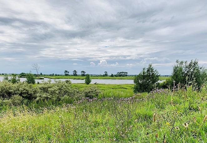 mooie-natuur-nederland