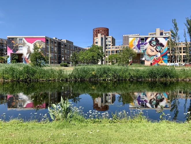 mooiste-street-art-den-haag