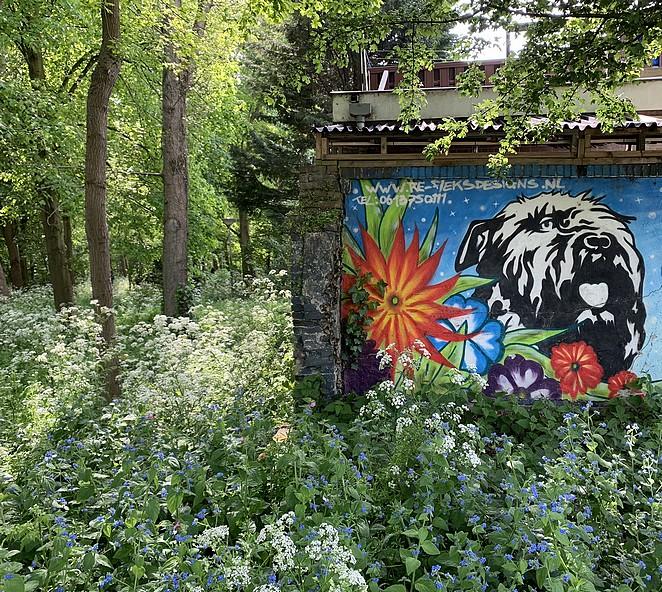 muurschildering-den-haag-madestein