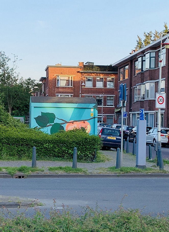 street-art-elektriciteitshuisje