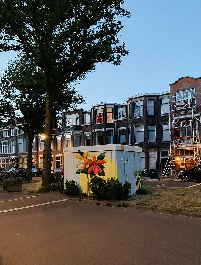 street-art-ieplaan