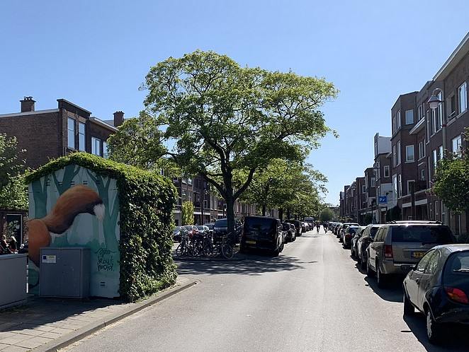 street-art-onbekende-wijken-den-haag