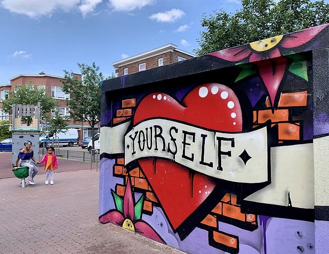 street-art-op-elektriciteitshuisjes-in-den-haag