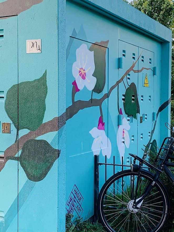 street-art-stroomhuisje-den-haag