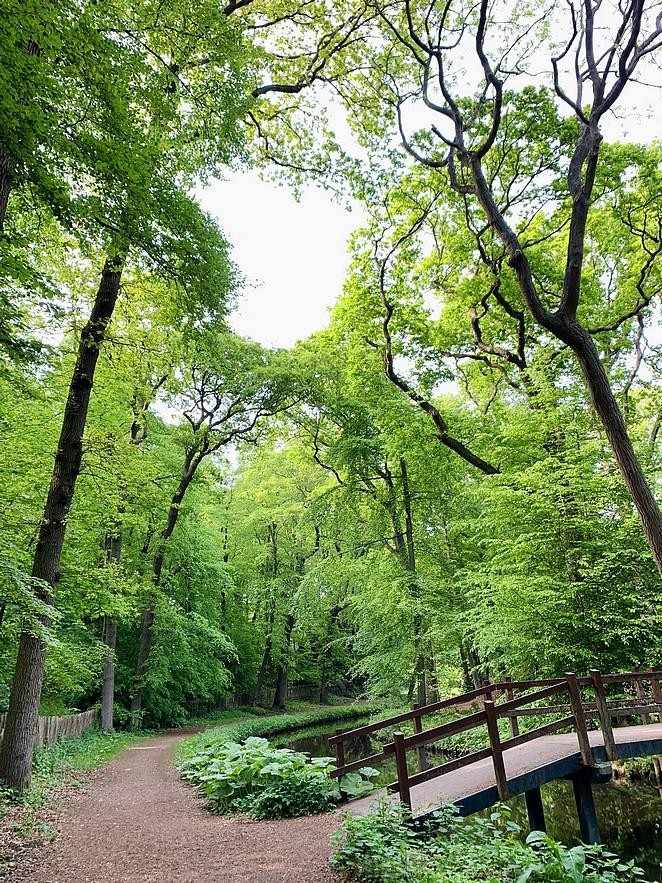 wandelen-op-landgoed-ockenburgh