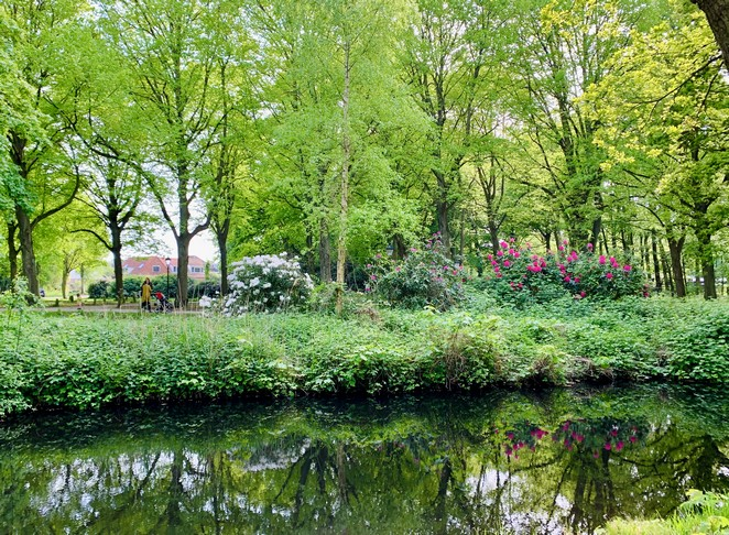 wandelen-over-landgoed-ockenburgh