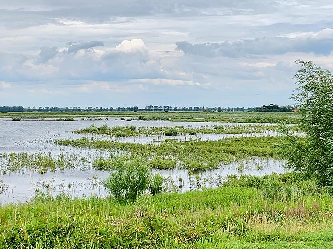 wetlands-nederland