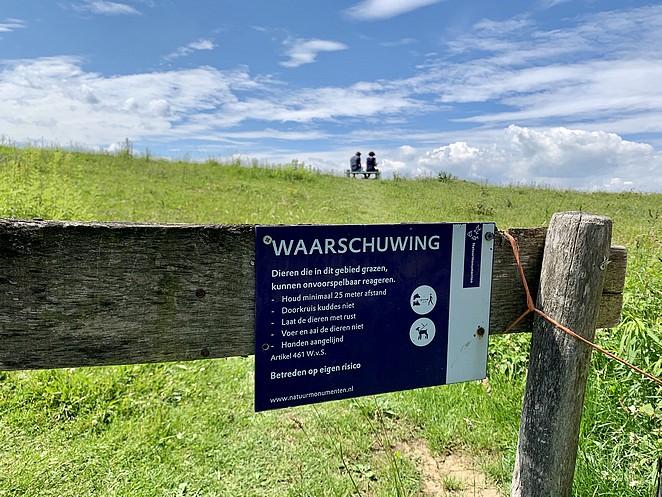 wilde-dieren-nederland