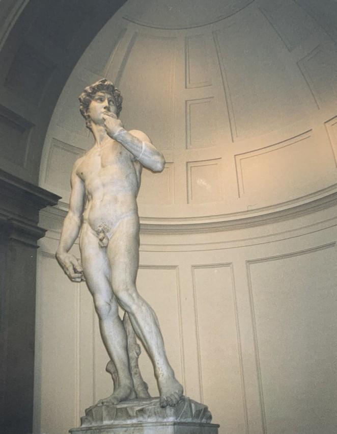 david-van-michelangelo