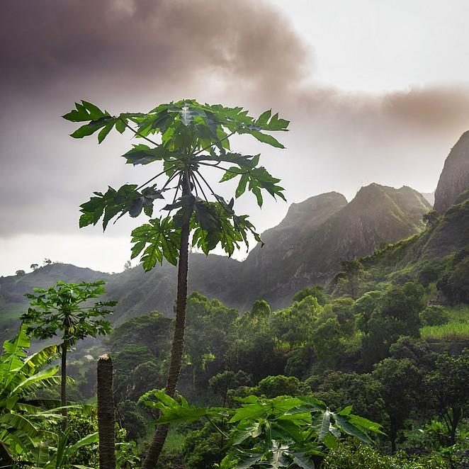 De mooiste eilanden van Kaapverdië: natuur, strand, bezienswaardigheden en tips op 10 Kaapverdische eilanden!
