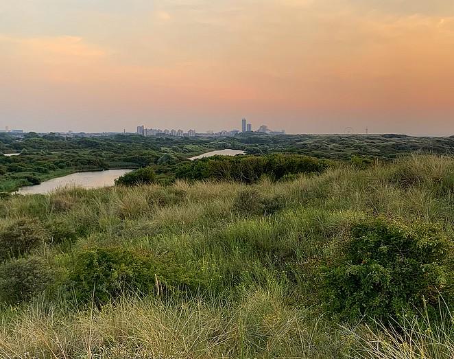 groen-terras-den-haag