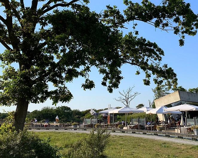 terras-natuur-den-haag