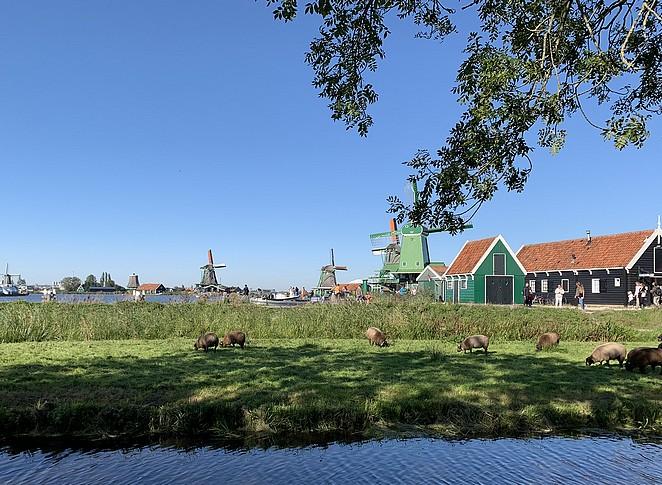 typisch-nederland