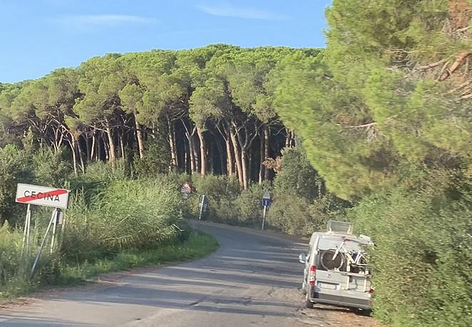 cecina-toscane