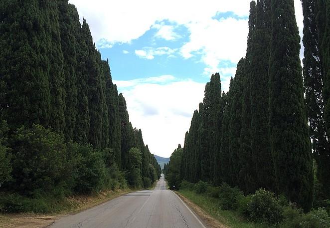 cipressen-weg-toscane