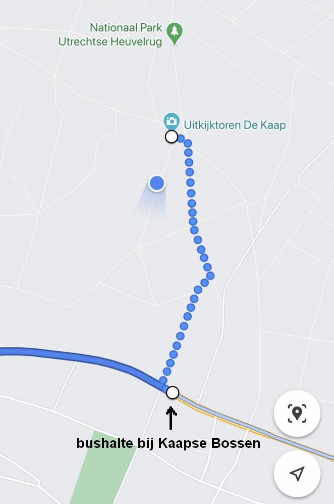 bus-kaapse-bossen