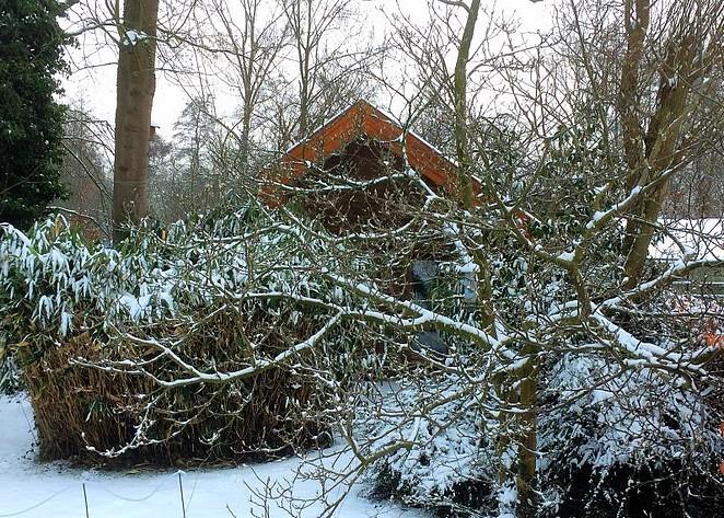 huisje-kerstvakantie-nederland